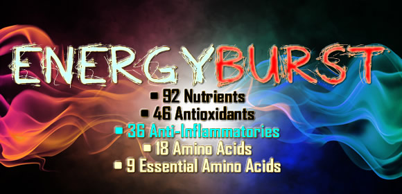 Why Buy More Energy™ Moringa?